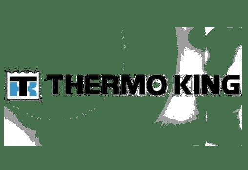 termoking integracija